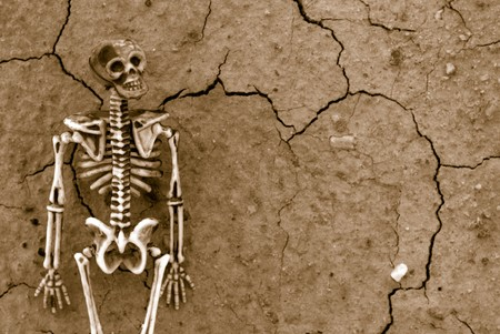 Distressed Skeleton background photo