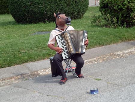 Horse head accordion player Stock Photo