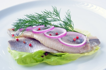 Two white herrings on a white plate Stock Photo