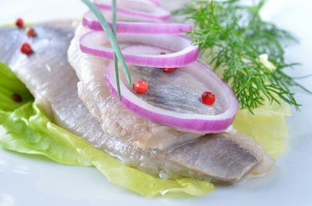 Two white herrings on a white plate photo