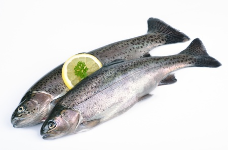 trouts: Fresh rainbow trouts, kitchen-ready