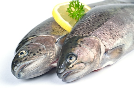 Fresh rainbow trouts, kitchen-ready photo
