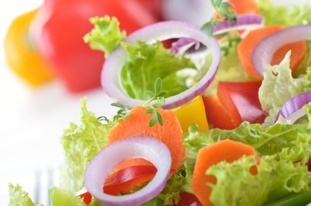 Colorful fresh salad with lollo bionda, onions, yellow and red paprika, carrots Stock Photo - 12208442