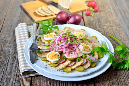 downloaded: Bavarian bread dumpling salad with onion rings, radishes, spring onions, sliced eggs and gherkins, dressed with oil and apple vinegar and some herbs