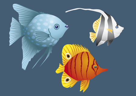 Colorful fish of coral reefs Stock Vector - 5883195