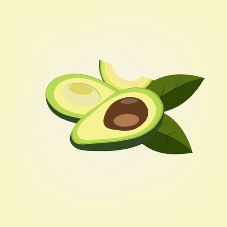 Avocado fruit background vector
