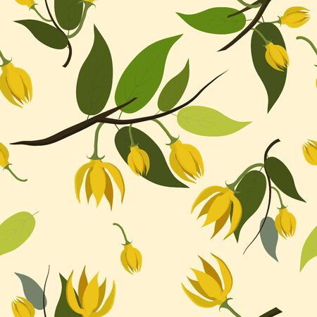 Seamless cute fresh floral pattern background,ylang ylang flower for design