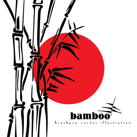 asiatic: Bamboo stems ink pen painting style. Simple black bamboo illustration on white background. Bamboo bush. Bamboo leaves.