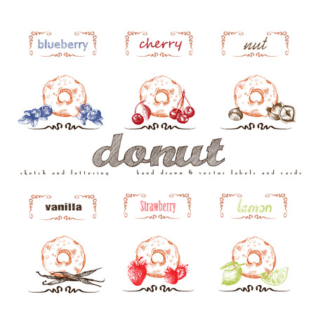sweetshop: Donuts hand drawn collection. Vector vintage illustration with cherry, blueberry, vanilla, nut, strawberry, lemon and letter elements. Illustration