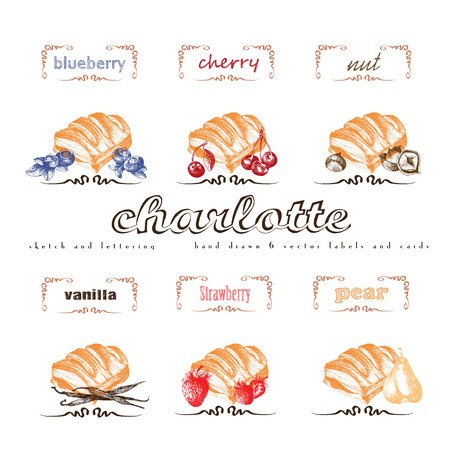 charlotte: Charlotte puff bun hand drawn collection. Vector vintage illustration with cherry, blueberry, vanilla, nut, strawberry, pear and letter elements.