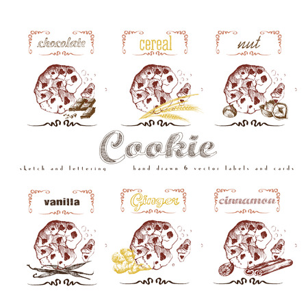 cereal: Cookies label lettering hand drawn sketch collection with chocolate, cereal, nut, vanilla, ginger, cinnamon. Vector vintage illustration and letter elements.