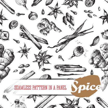 nutmeg: Flavour spices sketch food seamless pattern. Vector isolated elements: cinnamon, clove, cardamom, sunflower, poppy, seed, anise, vanilla, ginger, hazelnut, nutmeg. Tasty smells and aroma. Illustration