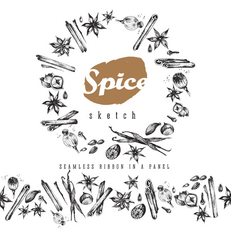 clove: Flavour spices sketch food round frame and seamless ribbon. Vector isolated elements: cinnamon,  clove, cardamom, sunflower, poppy, seed, anise, vanilla, ginger, hazelnut, nutmeg. Tasty smells  and aroma.
