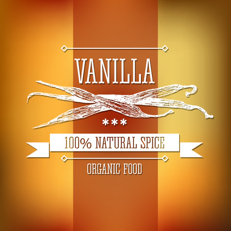 flavour: Spice vanilla neat hand drawn monochrome label flavour modern design. Vanilla sketch pictures with  text and ribbon on a vector colorful background.