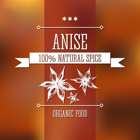 star anise: Spice star anise neat hand drawn monochrome label flavour modern design. Star anise  sketch  pictures with text and ribbon on a vector colorful background.