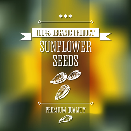 sunflower seeds: Sunflower seeds neat hand drawn monochrome label flavour modern design. Sunflower seeds sketch  pictures with text and ribbon on a vector colorful background.