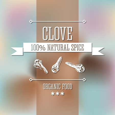 clove: Spice clove neat hand drawn monochrome label flavour modern design. Clove sketch pictures with  text and ribbon on a vector colorful background.