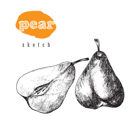 Pear and a half pear vector sketch black isolated illustration with title in hand drawn retro style. Pear fruit for farm shop.