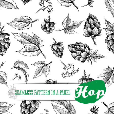 hops: Beer hops seamless pattern of hand drawn hops cones and hops leaves, black and white background, sketch and engraving design hops plants. All element isolated.