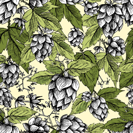 Beer hops seamless pattern of hand drawn hops cones and hops leaves, colorful background, sketch and engraving design hops plants. All element isolated.