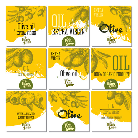 Set of 9 olive cards for design olive oil, Italian and Greece food. Vector hand drawn sketch isolated illustrations olives branches. Illustration