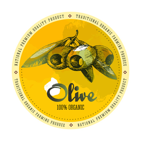pitted: Olives pitted with leaves vector colourful isolated label layout with watercolour spots, text, lettering in sketch hand drawn style. Illustration