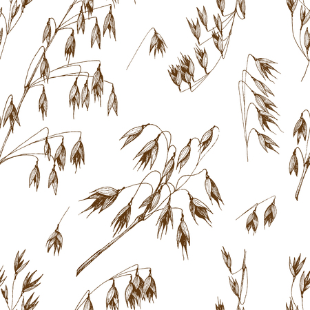 Oats spikelet seamless pattern sketch hand drawn vector background, grain and stems isolated vintage for the bakery shop or menu. Cereal theme.