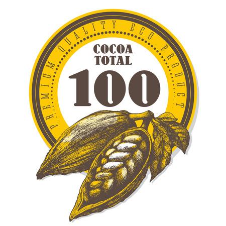 Chocolate cocoa pods label design. Sketch vintage vector illustration