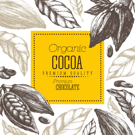 Chocolate cocoa products vector illustration with leaves and pods