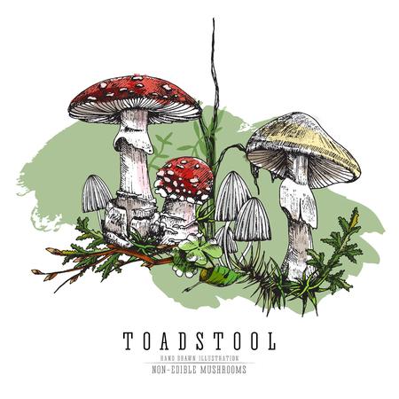 Non-edible poisonous forest mushroom illustration