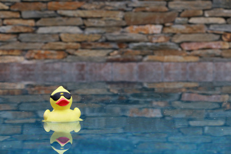 Rubber Duck Floating in Pool