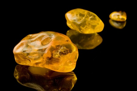 Sixty Million Year Old Baltic Amber