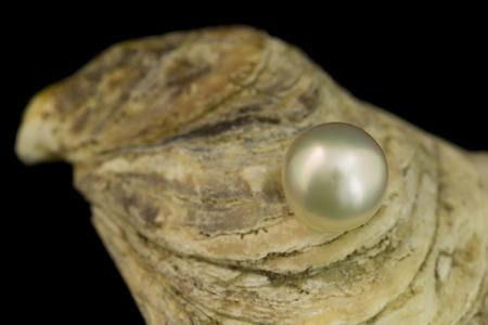 Magnificent White Pearl