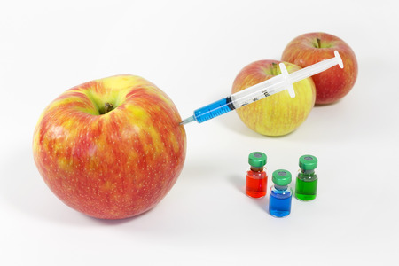 genetically modified: Normal and genetically modified apple with various compounds