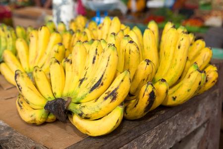 banane: Bananes de plus en plus sur une plantation dans les Philippines