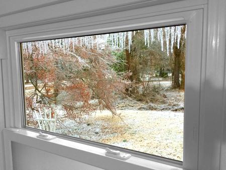 View of Winter Splendor in Mississippi