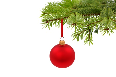 fir twig: Christmas evergreen spruce tree and glass ball Stock Photo