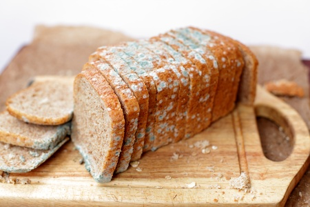 mouldy: Loaf of bread, dirt, germs and mess