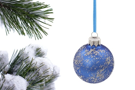 Christmas  evergreen tree and glass ball photo
