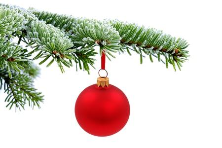 Kerstboom groenblijvende vuren en rode glas bal Stockfoto