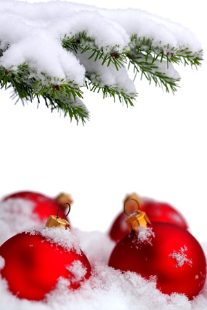 matt: Christmas evergreen spruce tree and red glass balls on snow background