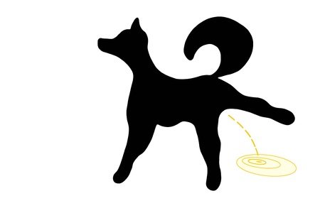urinate: Black silhouette of a dog pissing