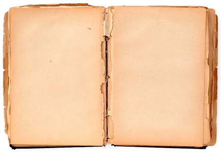 wastepaper: Old damaged book on white, paper texture Stock Photo