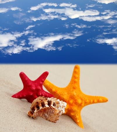 Pair starfish on the beach and blue sky, spa and summer vacation background photo