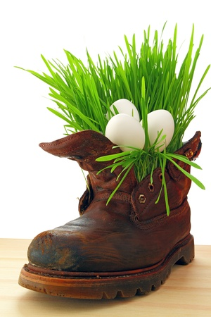 Easter white eggs in old shoes with fresh grass  photo