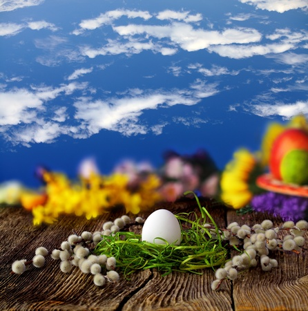crack willow: White easter egg on old farmhouse wooden table  Stock Photo