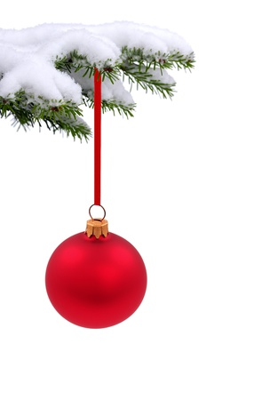 Christmas evergreen spruce tree with glass ball on snow background Stock Photo - 15124739