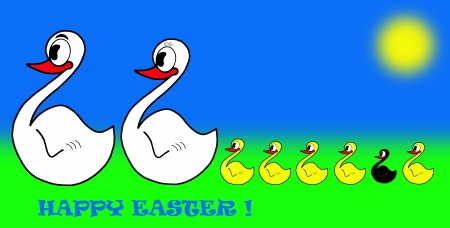 ugly duckling: Happy easter, family of swan and black ugly duckling Stock Photo