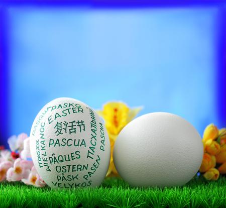 giant easter egg: White  giant easter egg on green groundwork on blue window background Stock Photo