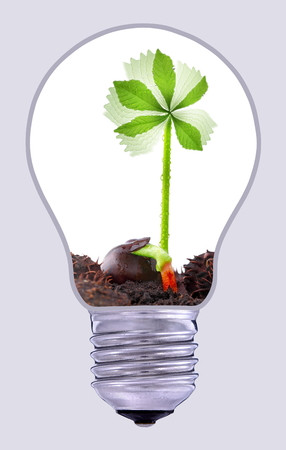 lamp: Green wind power plant, sustainable development Stock Photo